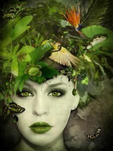 ecologia-emocional