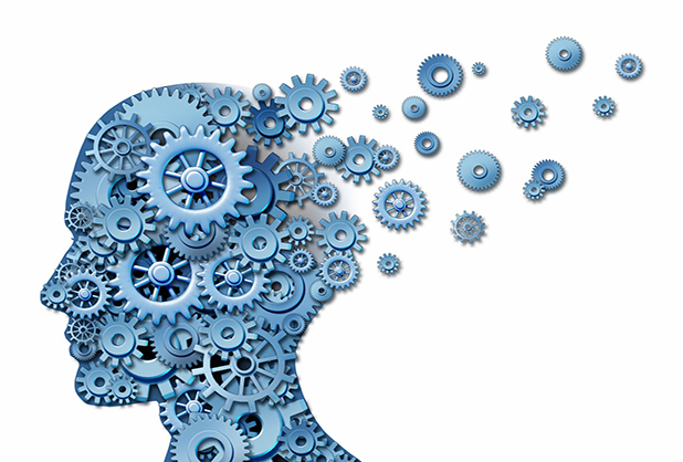 El cerebro y la atención
